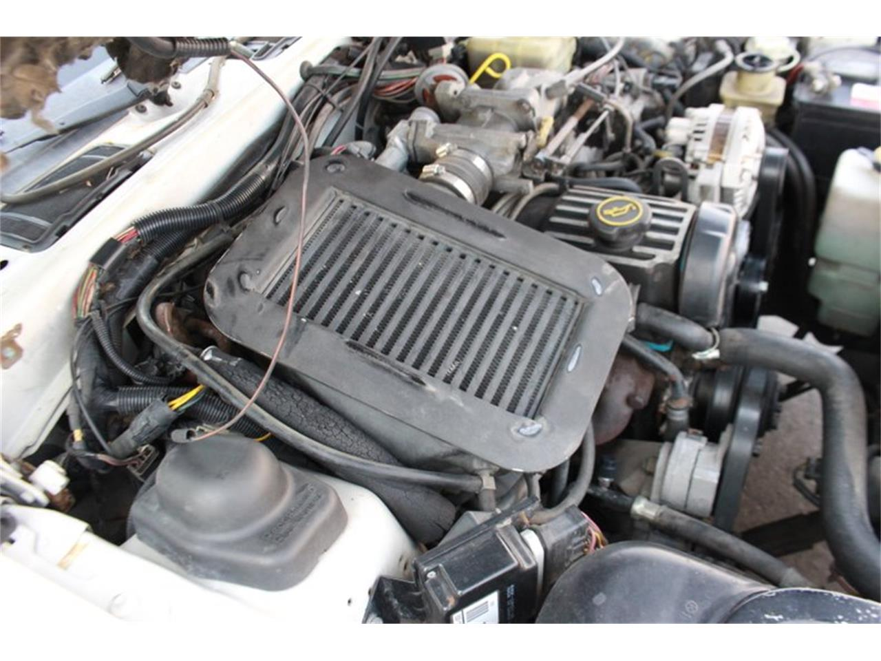 Large Picture of '88 Ford Thunderbird - $12,700.00 - OE4V