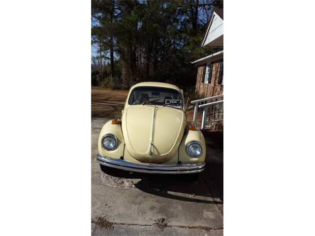 Picture of '71 Beetle - OHBR