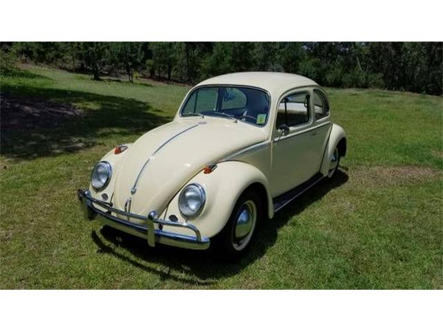 Picture of '58 Beetle - OHE8