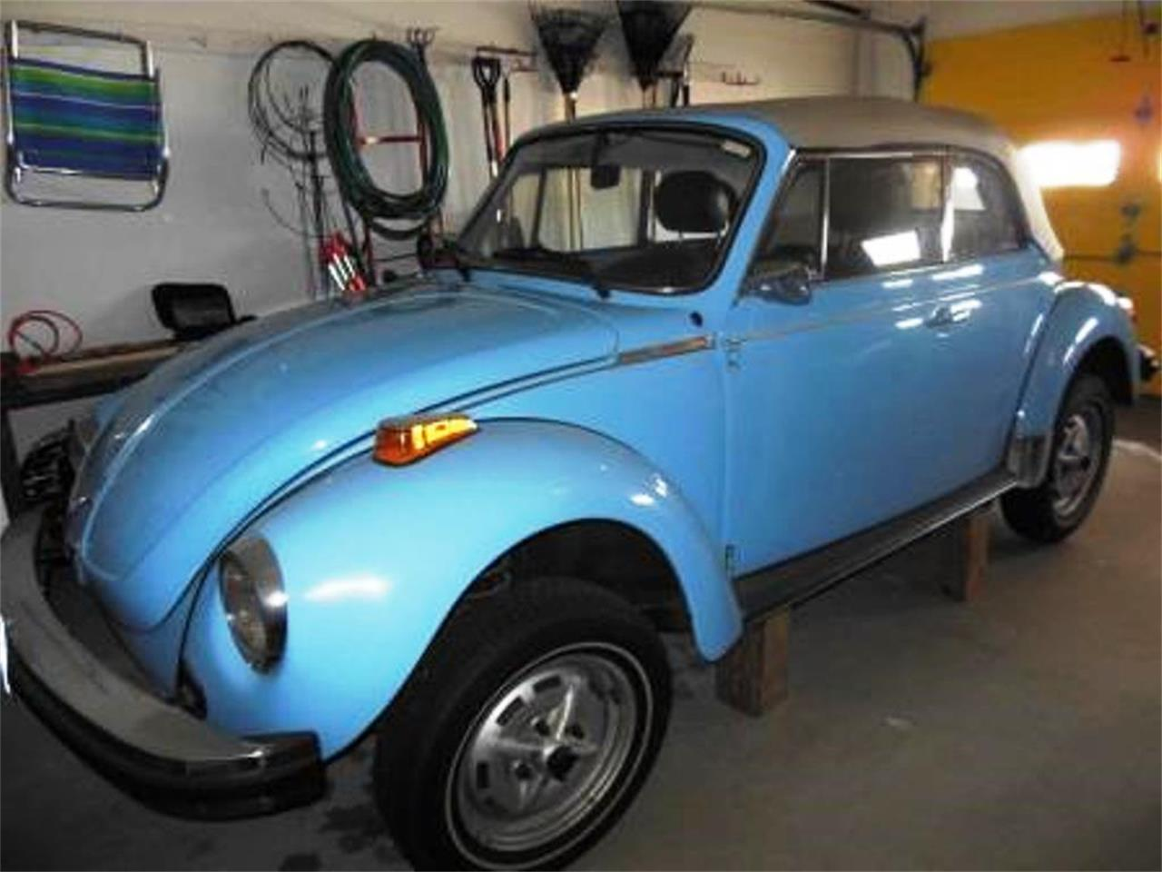 Large Picture of '79 Beetle - OIDP