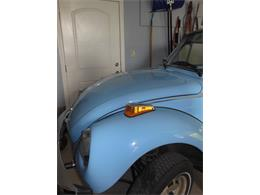 Picture of '79 Beetle - OIDP