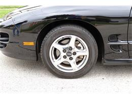 Picture of 1998 Pontiac Firebird Trans Am located in Alsip Illinois Offered by Midwest Car Exchange - OIXQ