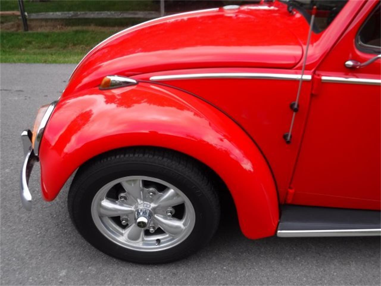 Large Picture of '59 Beetle located in Ohio Offered by Ultra Automotive - OIZB
