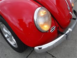 Picture of '59 Beetle located in Milford Ohio - $27,500.00 Offered by Ultra Automotive - OIZB