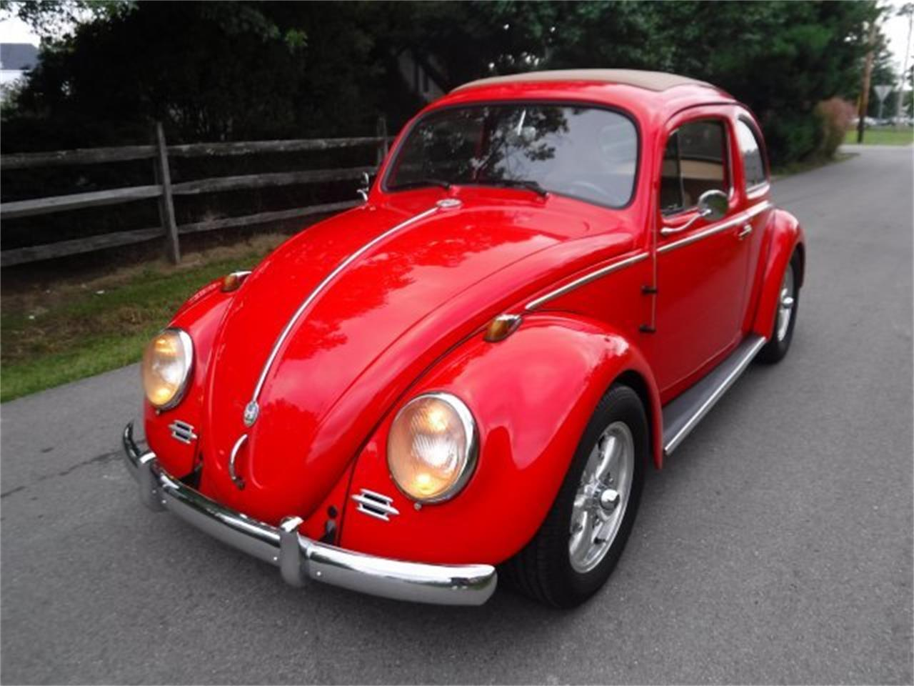 Large Picture of Classic 1959 Volkswagen Beetle located in Ohio - $27,500.00 - OIZB