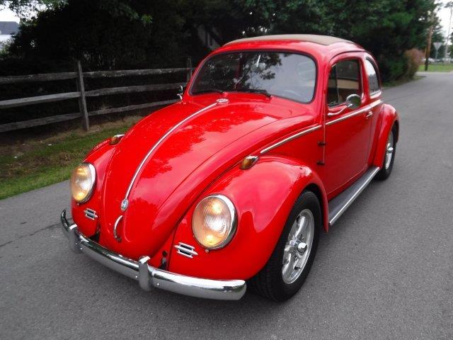 Picture of '59 Beetle - OIZB