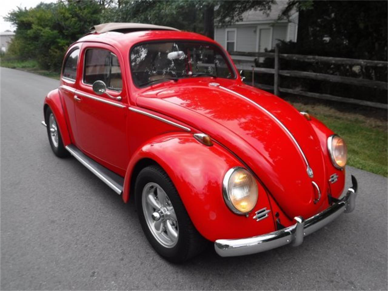 Large Picture of 1959 Beetle Offered by Ultra Automotive - OIZB