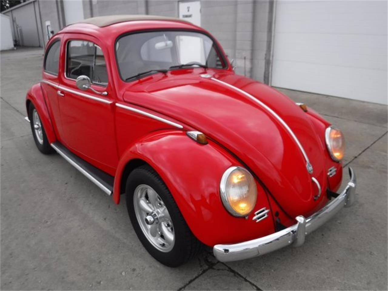 Large Picture of '59 Volkswagen Beetle located in Ohio - $27,500.00 Offered by Ultra Automotive - OIZB