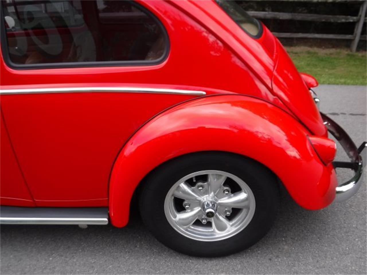 Large Picture of Classic '59 Beetle located in Milford Ohio Offered by Ultra Automotive - OIZB