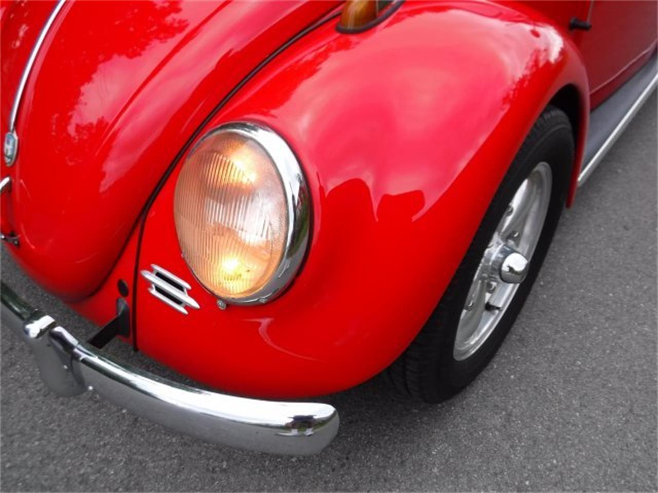 Large Picture of 1959 Beetle - $27,500.00 Offered by Ultra Automotive - OIZB