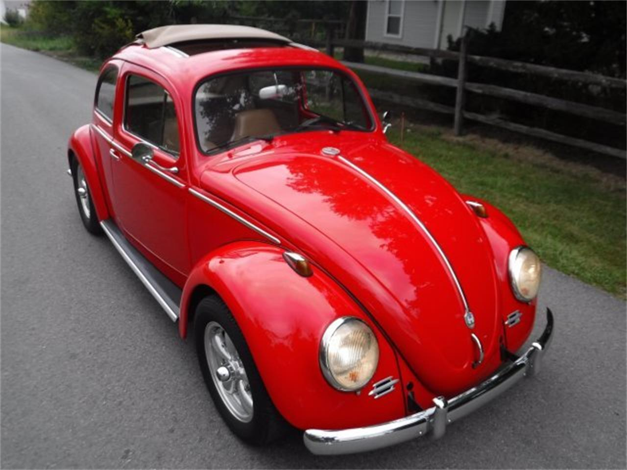 Large Picture of Classic 1959 Beetle located in Milford Ohio - $27,500.00 - OIZB