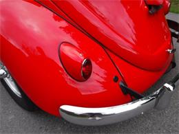 Picture of '59 Beetle - $27,500.00 Offered by Ultra Automotive - OIZB