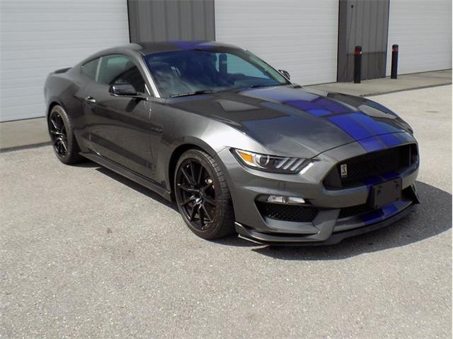 Picture of '16 GT350 - OJZB