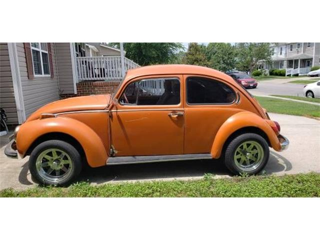 Picture of '71 Beetle - OKET