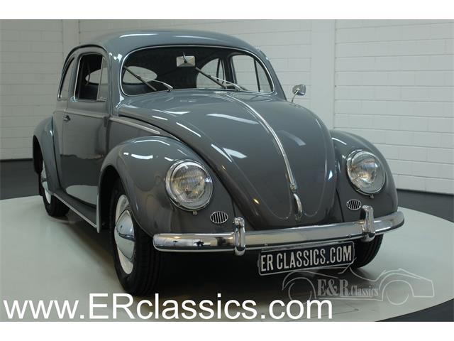Picture of '53 Beetle - OKKE