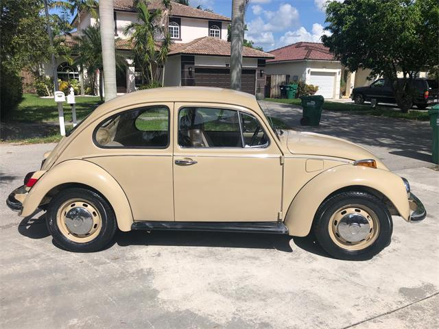 Picture of '70 Beetle - OKL5