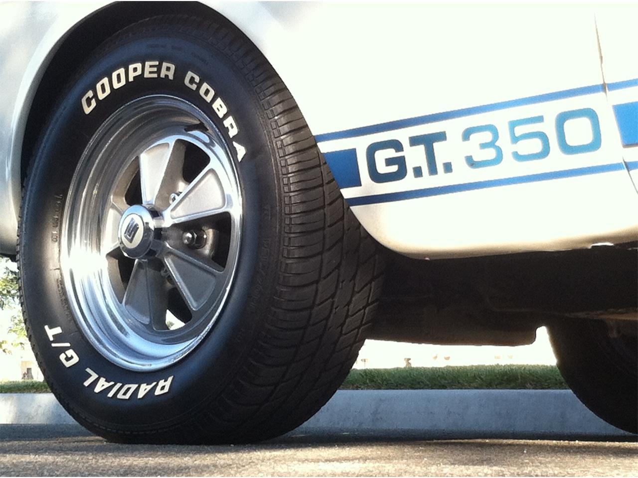 Large Picture of '65 GT350 - OG83