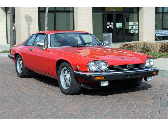 Picture of '85 XJS - OMAC