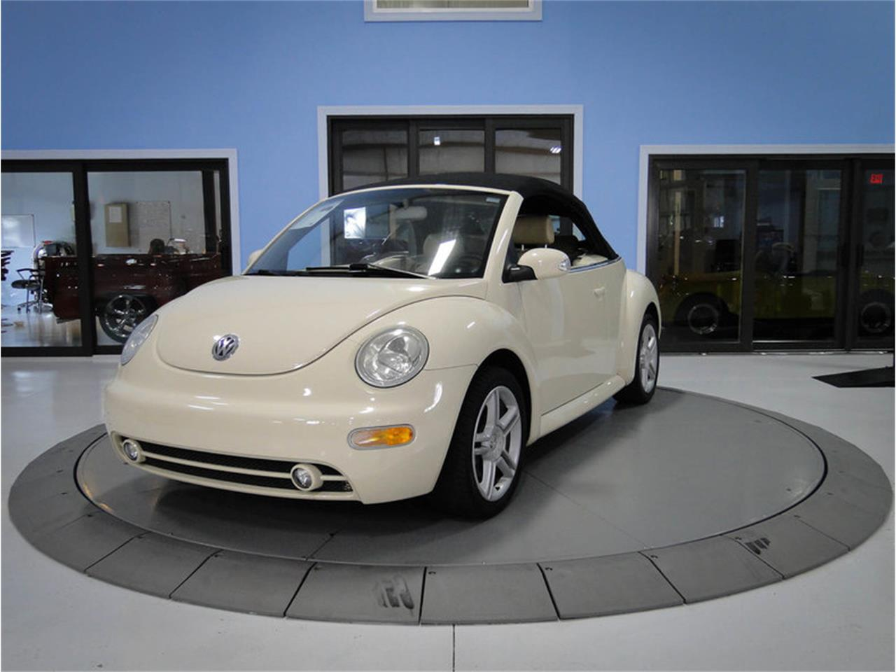 Large Picture Of 04 Beetle Onb6
