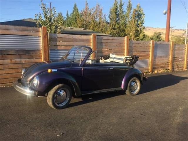 Picture of '79 Beetle - OO8O