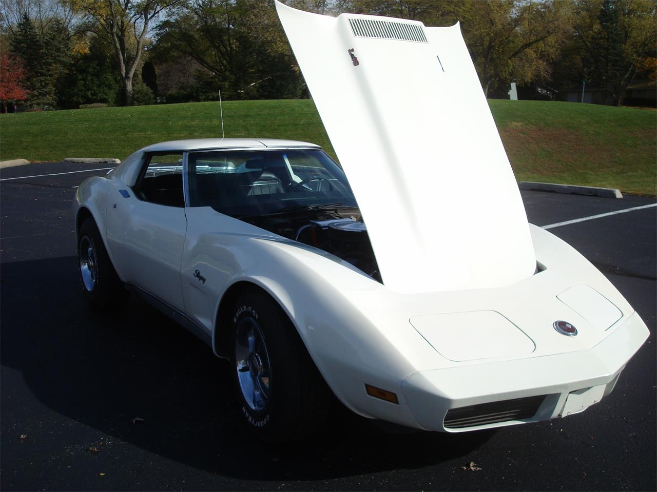 Large Picture of '74 Chevrolet Corvette - $10,900.00 Offered by Naperville Auto Haus - OOF3