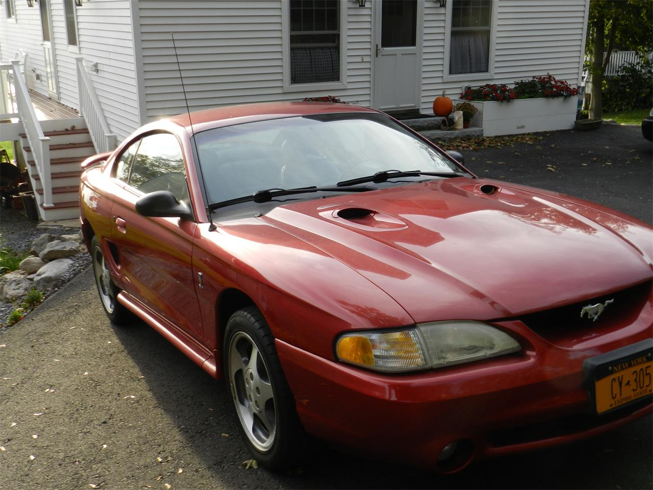 For sale 1996 ford mustang cobra in weedsport new york