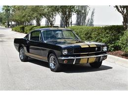 Picture of '66 Shelby GT Offered by SunCoast Auto Auction - ONHH