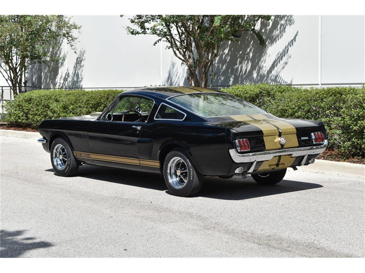 Large Picture of 1966 Shelby GT Offered by SunCoast Auto Auction - ONHH