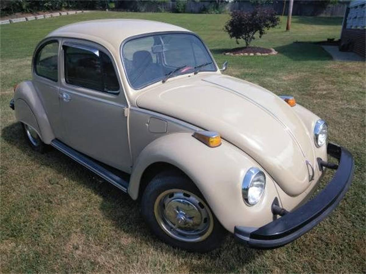 Large Picture of '74 Beetle - OOSL