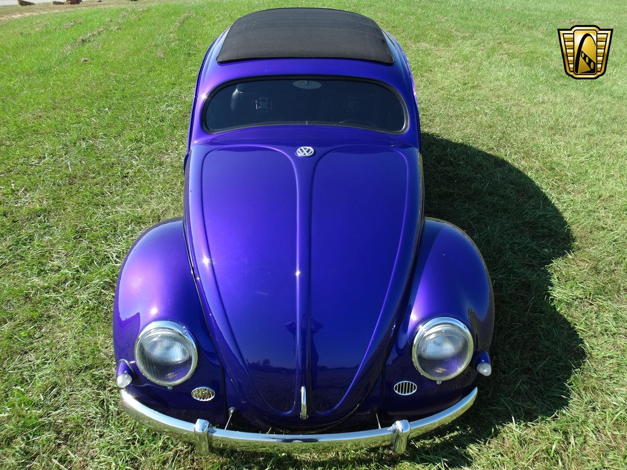 Large Picture of '56 Volkswagen Beetle - $23,995.00 Offered by Gateway Classic Cars - Louisville - OOT8