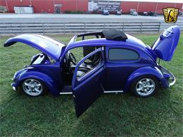 Picture of 1956 Beetle - OOT8