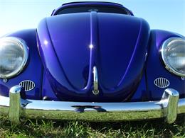 Picture of '56 Beetle Offered by Gateway Classic Cars - Louisville - OOT8