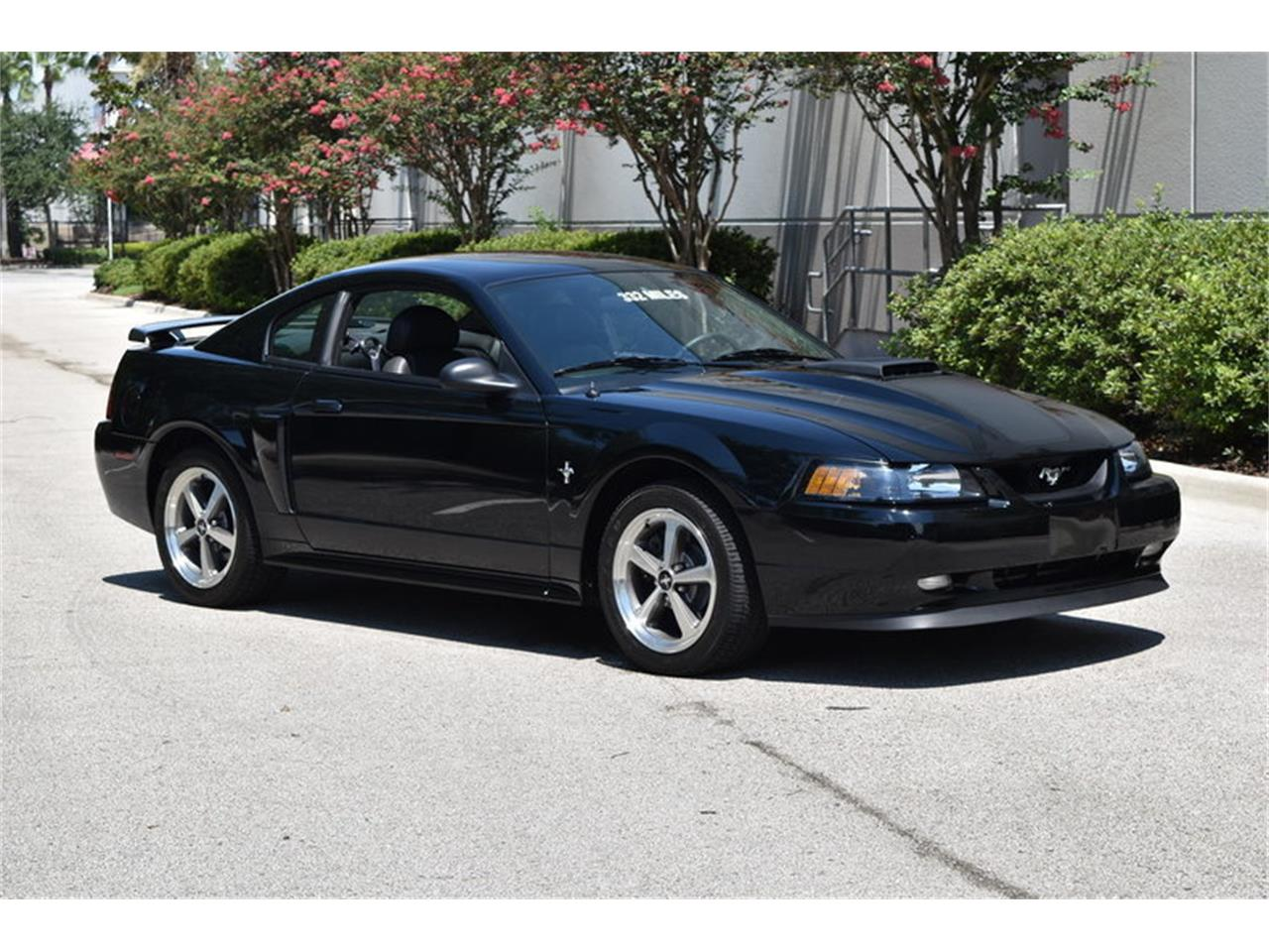 Large picture of 03 mustang onid