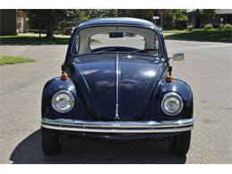 Picture of '69 Beetle - OP65