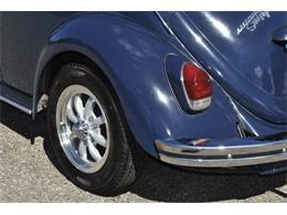 Picture of '69 Beetle - OP65