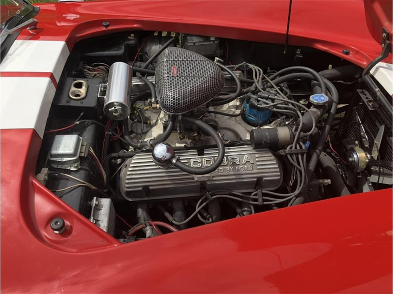 Large Picture of '66 Cobra - OND5