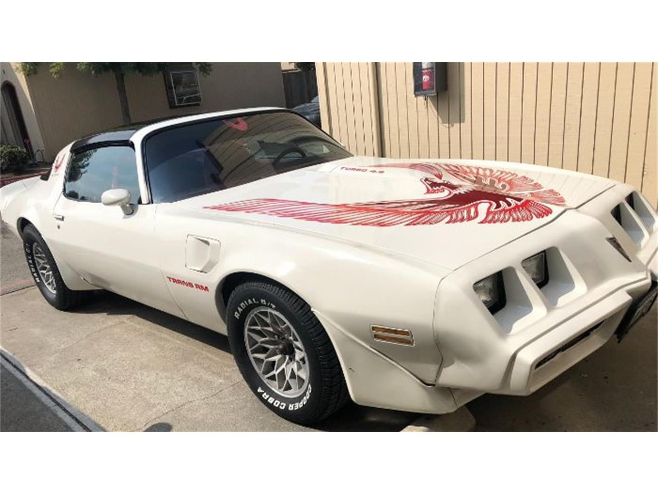 Large Picture of '81 Firebird Trans Am - OP9Y