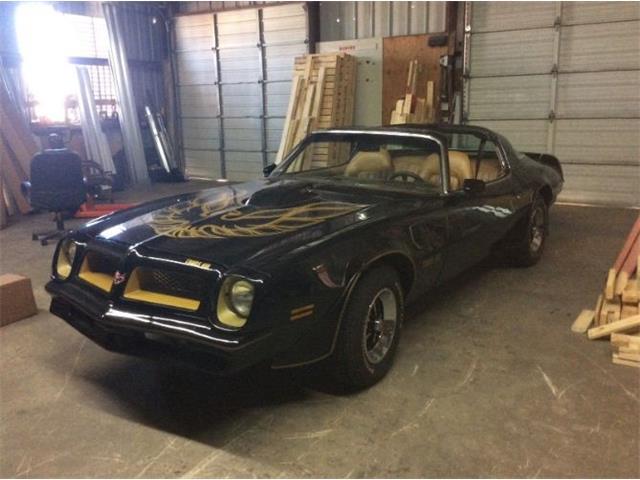 Picture of '76 Pontiac Firebird Trans Am - $28,495.00 - OPA4