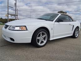 Picture of '99 Mustang SVT Cobra - OPEF
