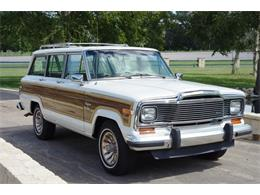 Picture of '83 Wagoneer - OPEW