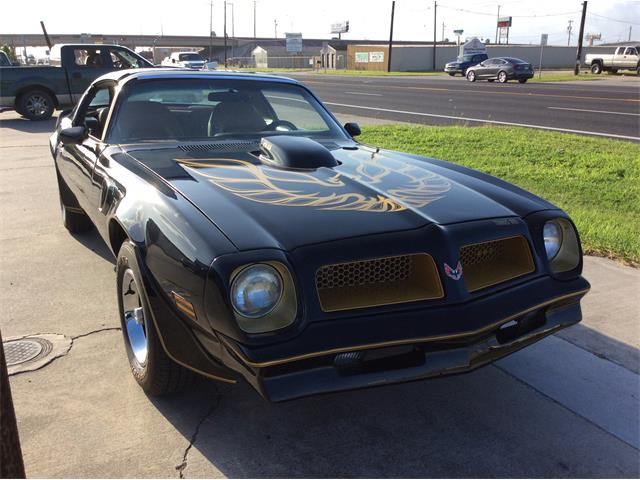 Picture of 1976 Pontiac Firebird Trans Am Offered by a Private Seller - OPNC