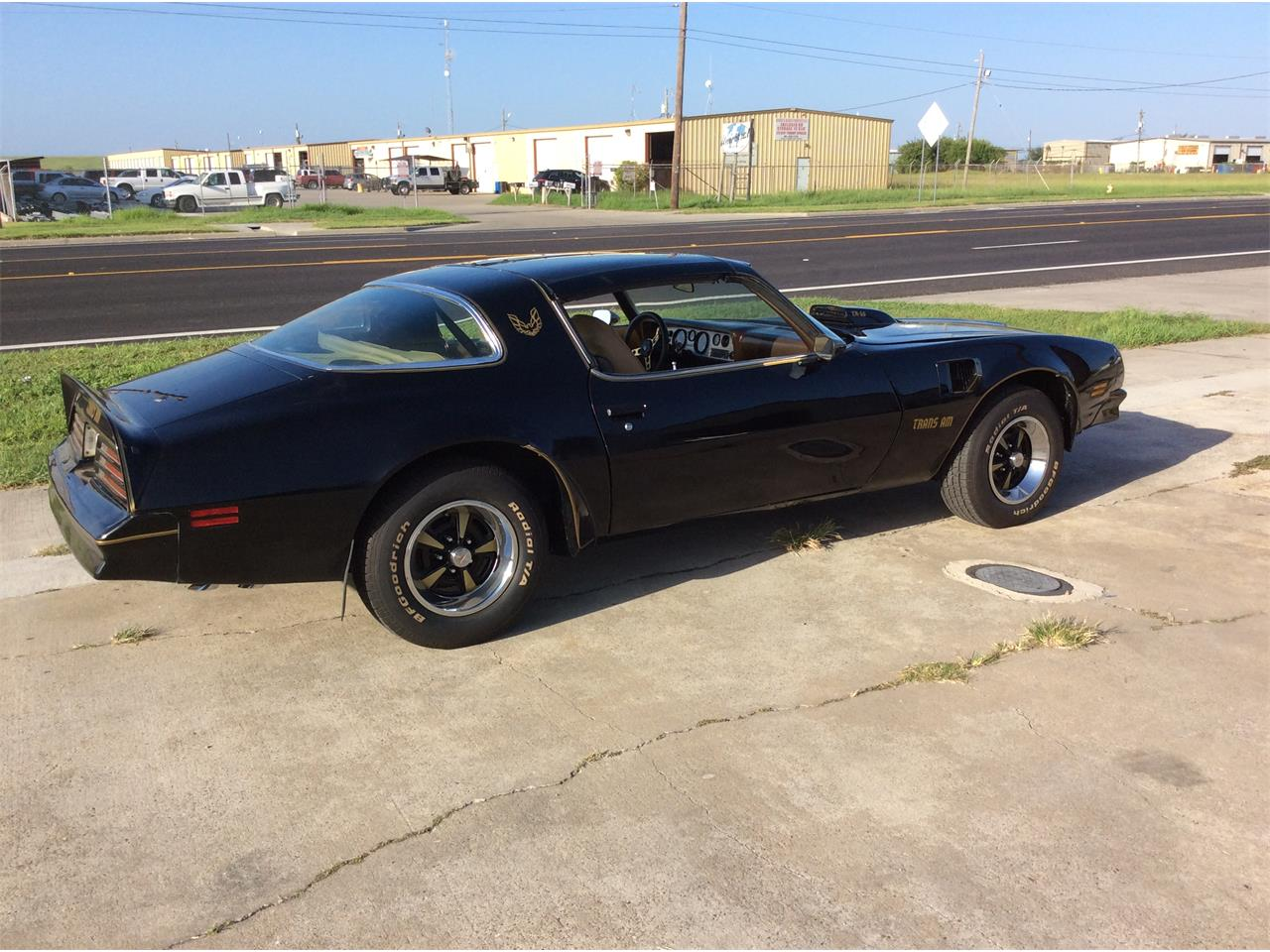 Large Picture of '76 Firebird Trans Am - OPNC