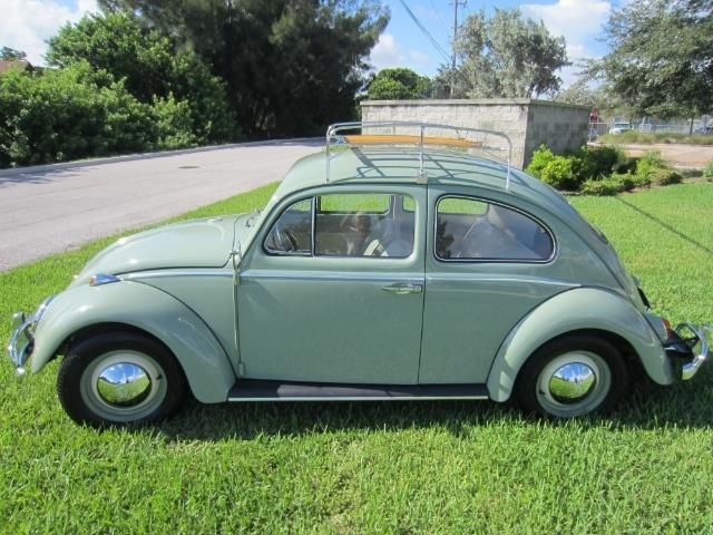 Picture of '64 Beetle - ONKV