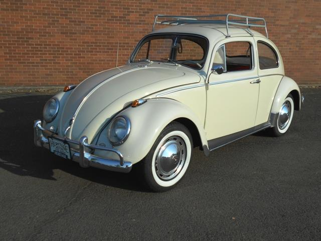 Picture of '62 Beetle - OPYH