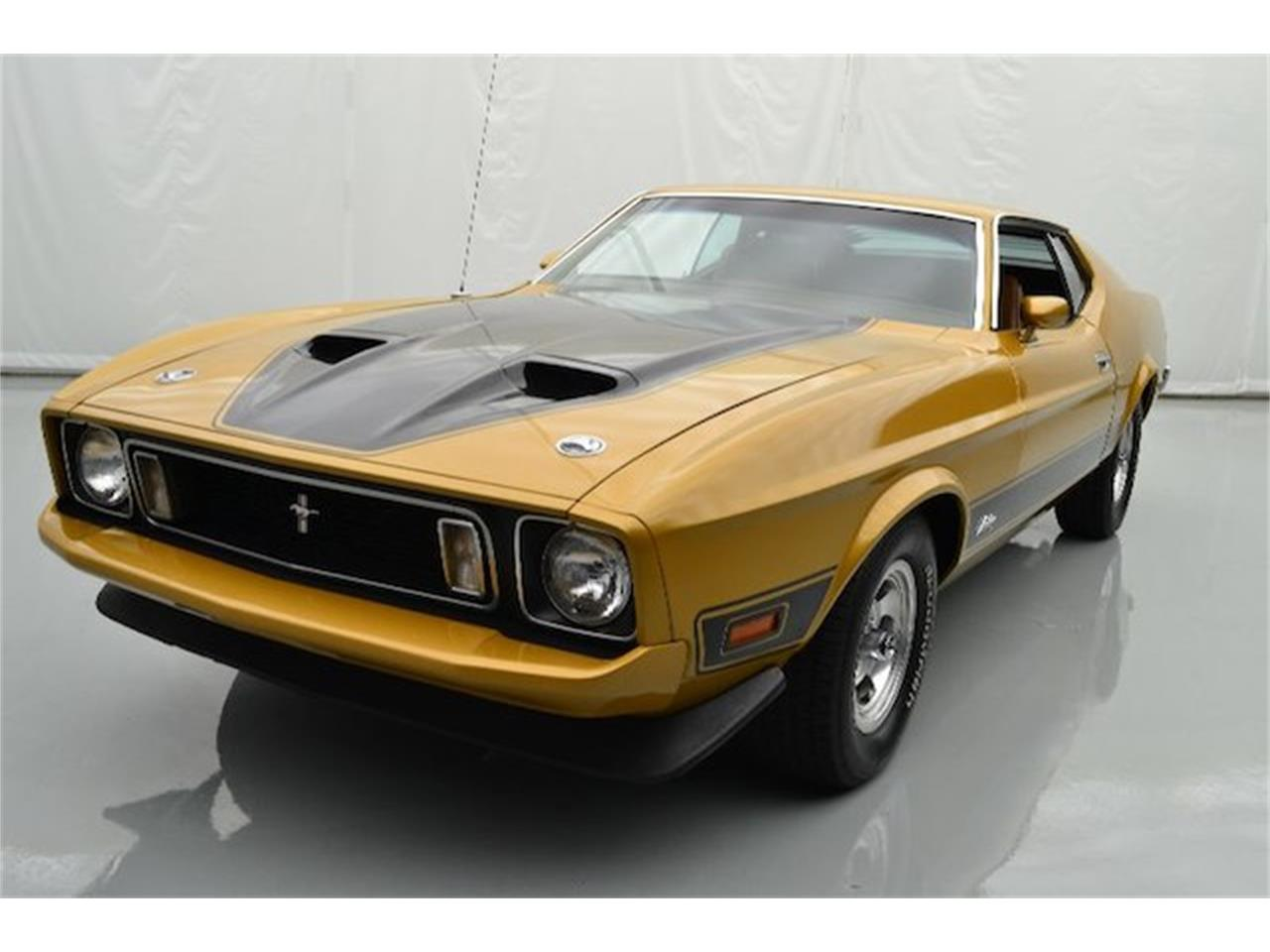 Large Picture of '73 Mustang - OQO1