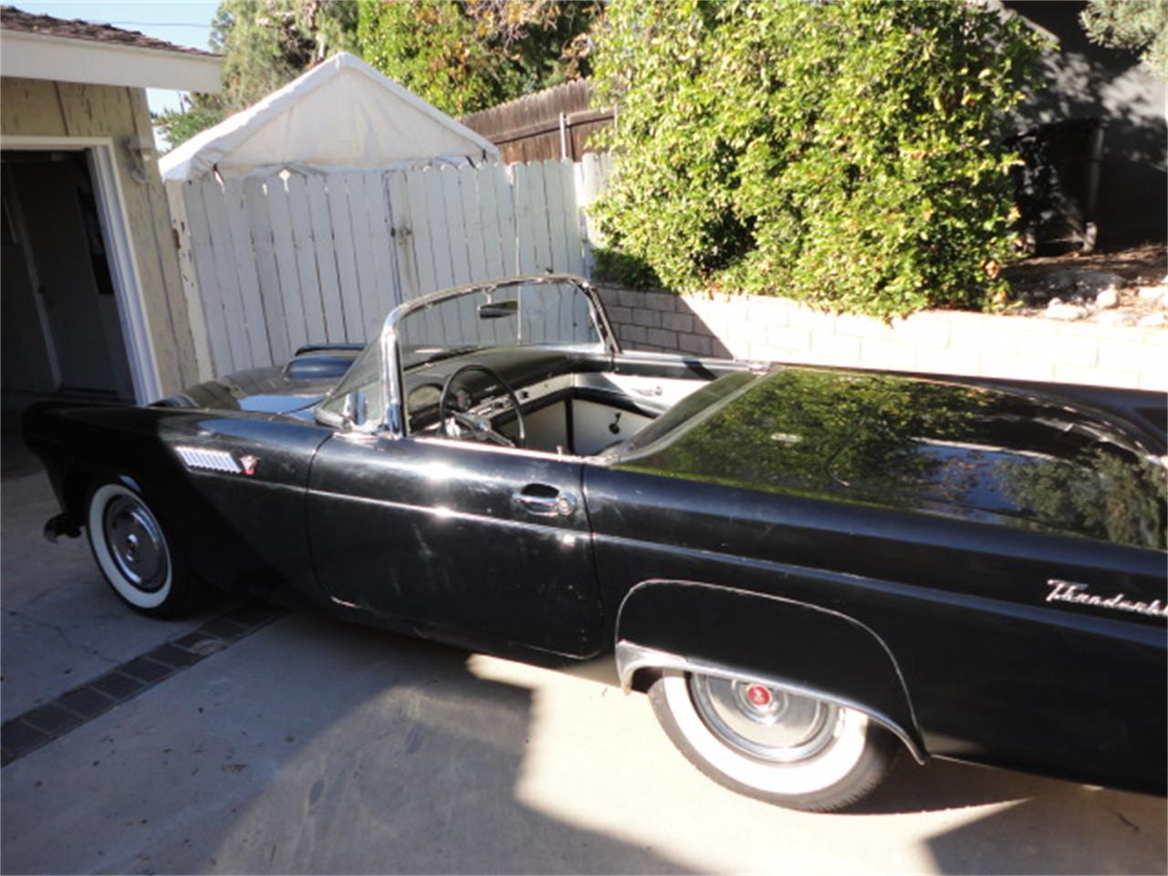Large Picture of '55 Thunderbird - OQPP