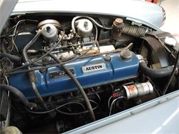 Picture of '66 3000 Mark III BJ8 - OS6M