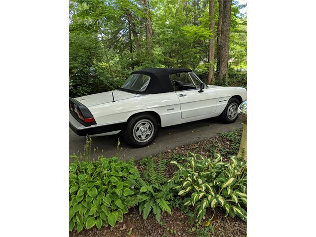 Classic Alfa Romeo For Sale On ClassicCarscom - 1988 alfa romeo spider for sale