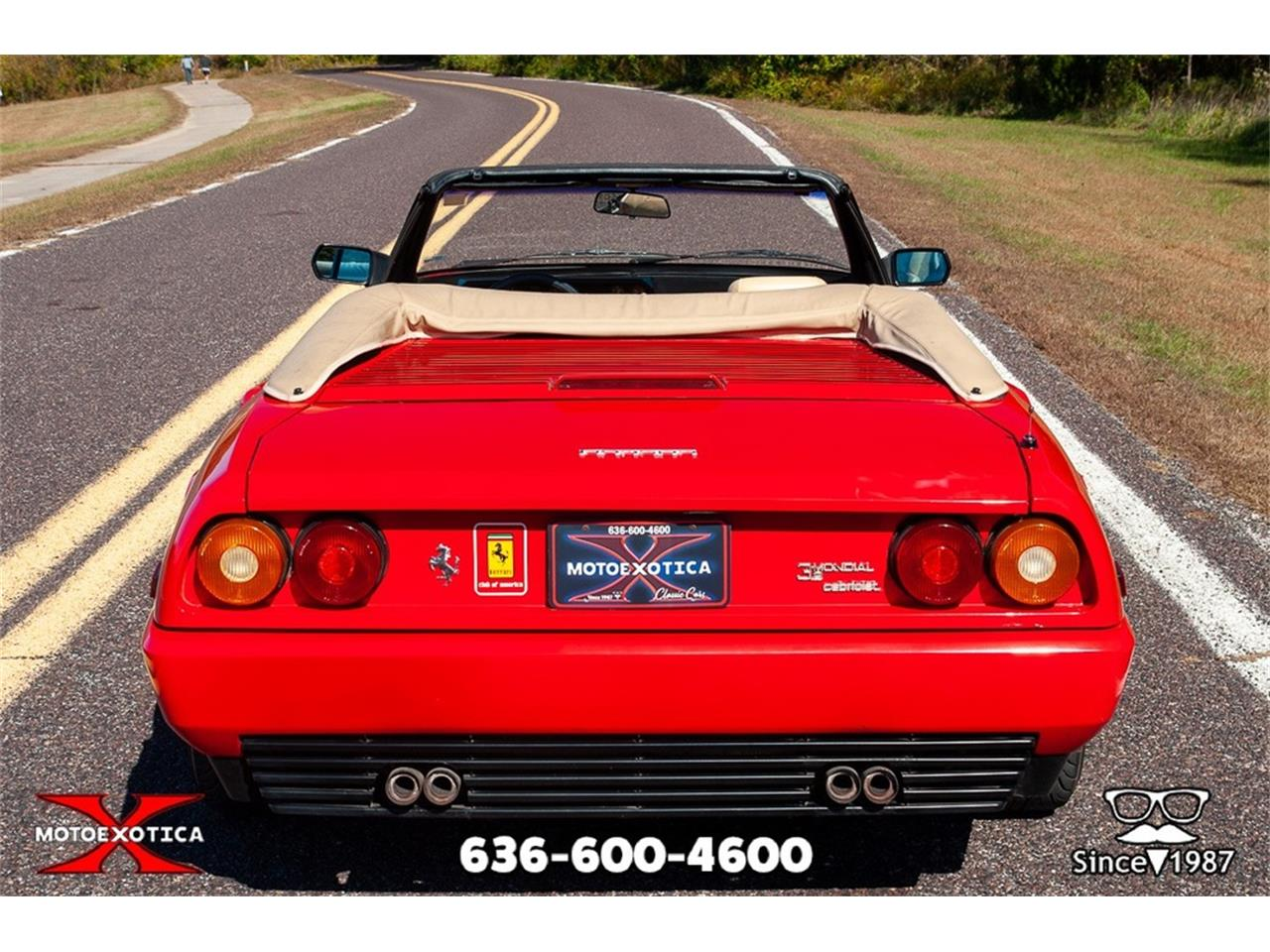 Large Picture of '86 Mondial - OT6A