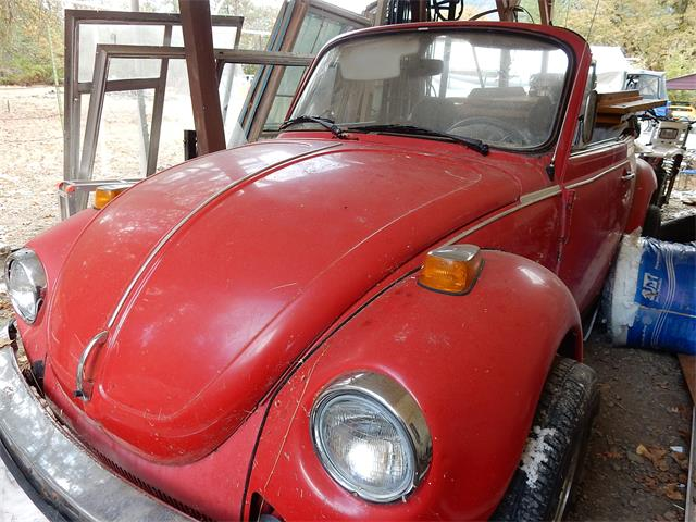 Picture of '79 Super Beetle - OTG8
